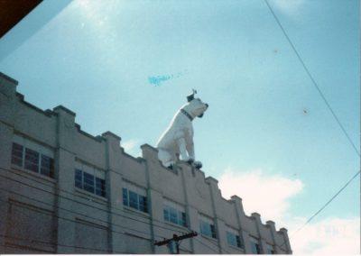 1990 Albany, NY Reunion (043)